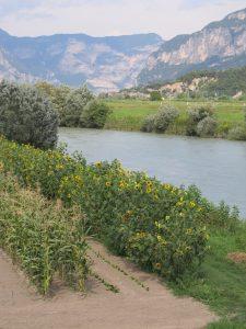 Adige Valley Garden