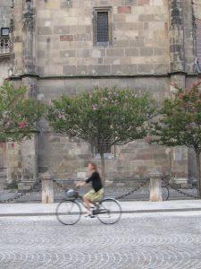 Bolzano Cyclist