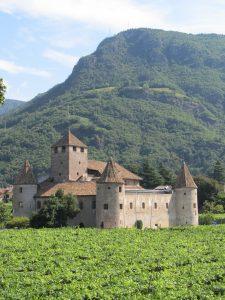 Castle & Vines
