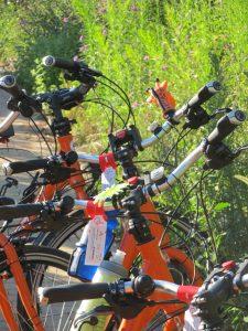 Girlie Bikes