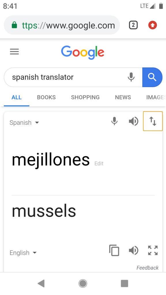 Google Translator Screenshot