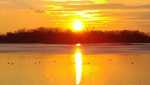 Heinz Sunset