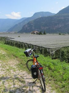 Adige Farm