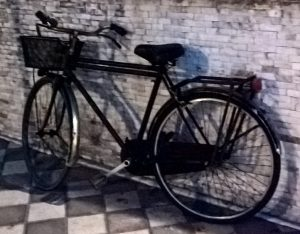 Italian City Bike