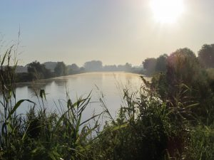 Morning Mist - Po Canal