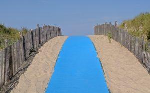 DE Beach Path