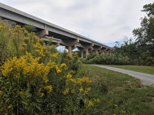 Turnpike Bridge